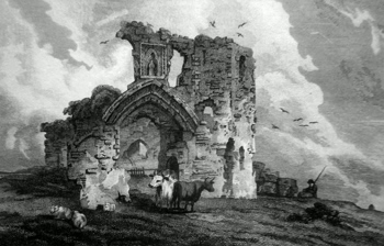 ANTIQUE PRINT: DENBIGH CASTLE, NORTH WALES.