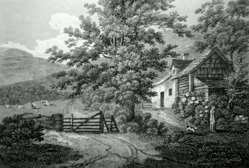 ANTIQUE PRINT: VIEW NEAR LLANGOLLEN, NORTH WALES.