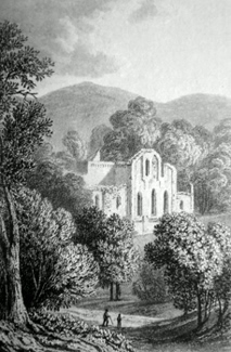 ANTIQUE PRINT: VALLE CRUCIS ABBEY.