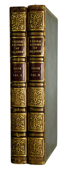 WHITE, Gilbert, 1720-1793 : THE NATURAL HISTORY OF SELBORNE.